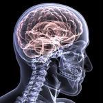 Ученые изобрели «интеллектуальную шляпу»