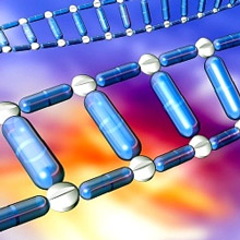 Обнаружен ген, при «выключении» которого, возможна регенерация тканей
