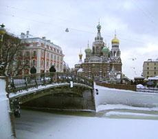 Корь не покинет Петербург минимум до мая