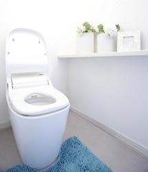 Роспотребнадзор урегулирует вопросы касательно расположения туалетов в квартирах