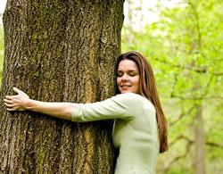 Как вымирание деревьев может сказаться на здоровье человека?